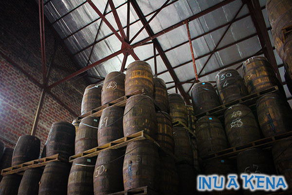 rum-barrels-in-angostura-warehouse