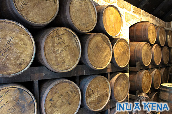 Rum aging in barrels at Saint Nicholas Abbey