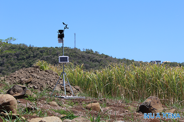 cane-co-weather-station
